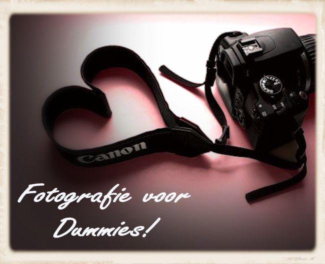 Fotogrdummies